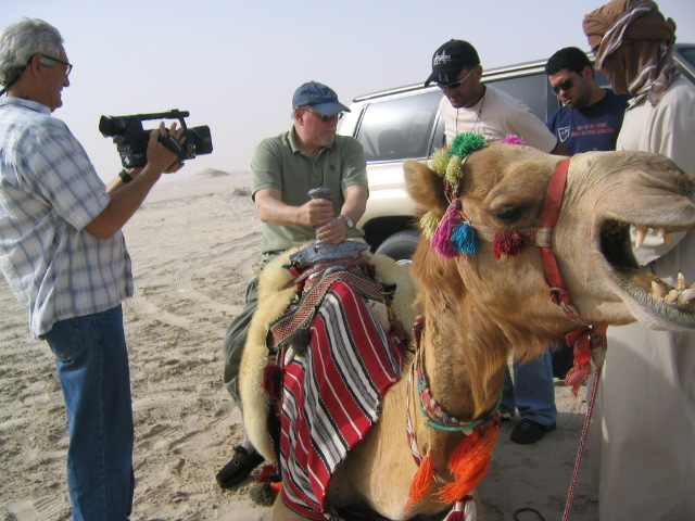 Sex stories arab camel beater